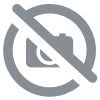 Molimed Men Protect